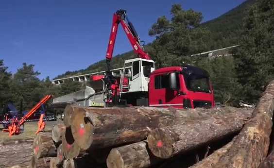 Accordo interregionale sul prelievo legnoso in ambito boschivo