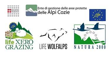 A BOSTER nord ovest, l'ente di gestione delle aree protette delle Alpi Cozie presenta due interessanti progetti LIFE+