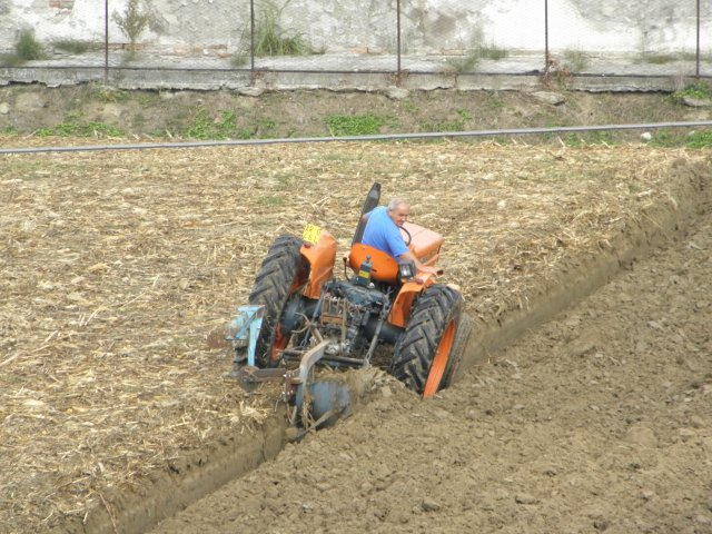 Regione Veneto, incentivi alla diversificazione delle attività agricole