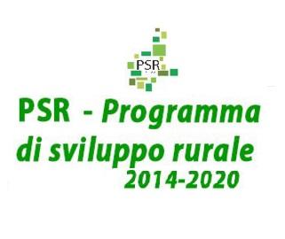 I primi bandi forestali del PSR 2014-2020: a Torino il 24 febbraio