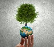 AGEVOLAZIONI Nuovi incentivi per le rinnovabili