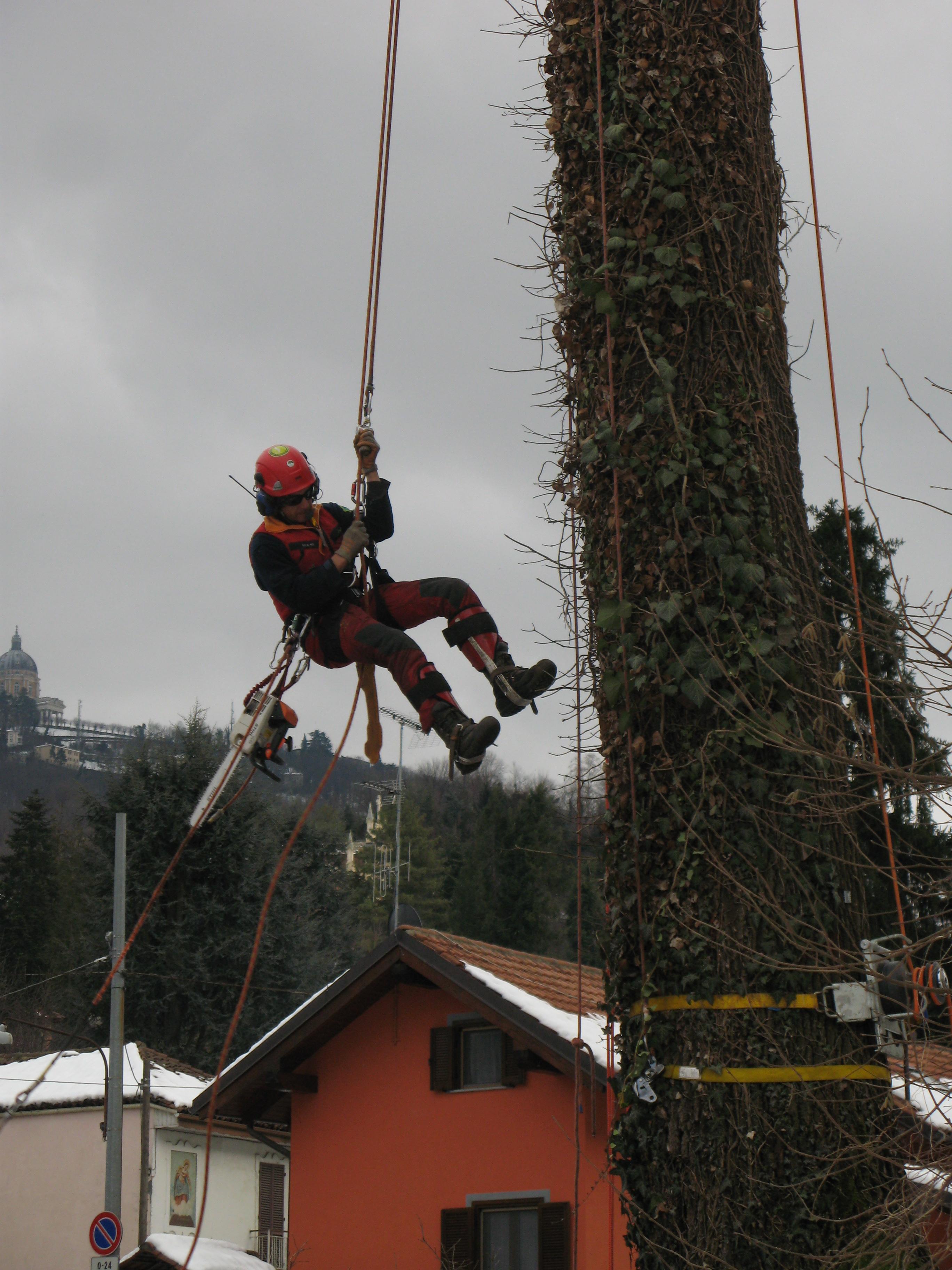 AIFOR, l'Associazione Istruttori Forestali