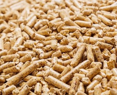 Una fotografia del mercato delle biomasse legnose in Italia