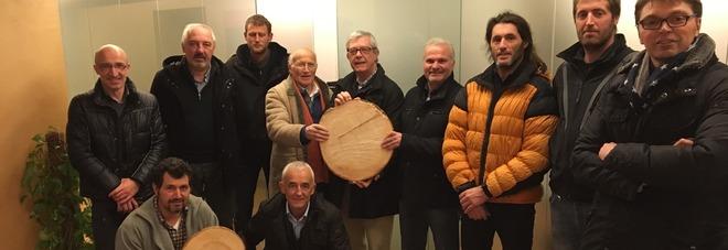 Nasce la prima Rete di imprese in Italia per il legno di abete bianco