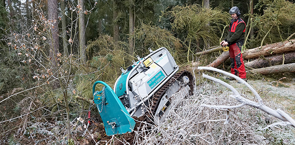 Thaler Karl e Forestal Service & Co. Sas a Boster nord est 2017