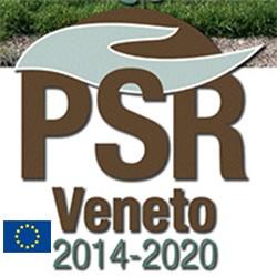 PSR Veneto: aperti i bandi per 25,8 MLN di euro