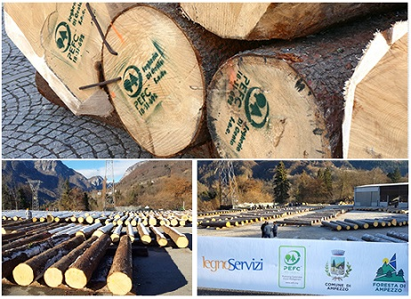 4a Asta regionale del legname di pregio - FVG