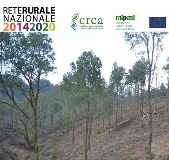 Workshop Gestione dei boschi cedui: avanzamenti tecnico- scientifici e applicazioni operative