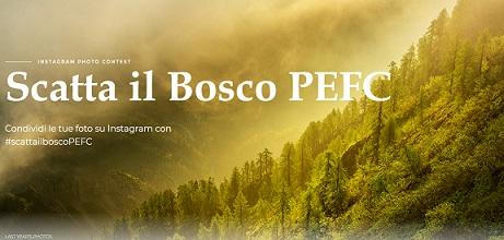 Il Pefc lancia su Instagram un concorso dedicato al patrimonio forestale