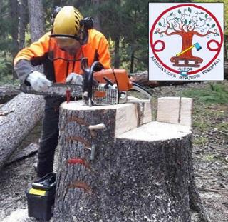 AIFOR (Associazione Istruttori Forestali) presenta il Corso che terrà a Boster 2018