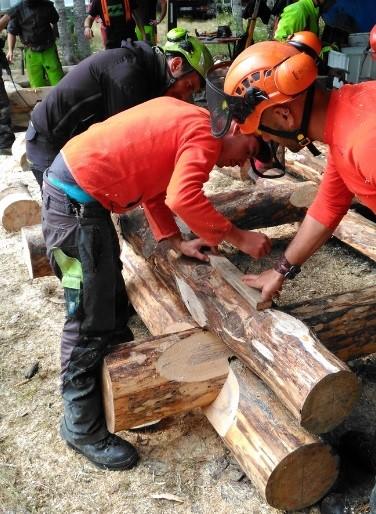 Tecniche di costruzione in legno: attività formativa per 10 operatori del settore