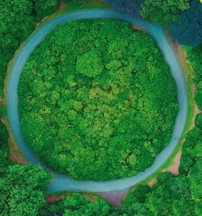 """FIPER - Presentati i risultati dello Studio:"""" Teleriscaldamento a biomassa: un investimento per il territorio"""""""