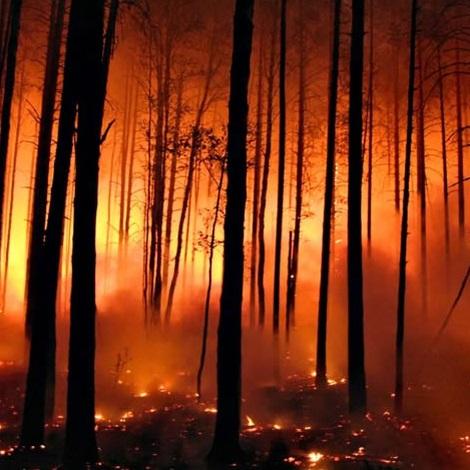 Incendi boschivi in montagna: l'impegno di Uncem per la prevenzione e la gestione dei roghi