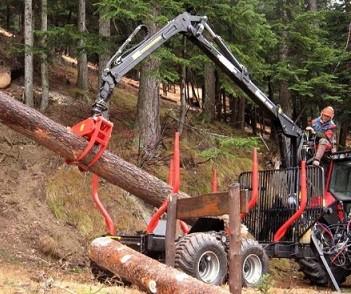 """""""Nei nostri boschi un business da 200 nuovi posti di lavoro"""""""