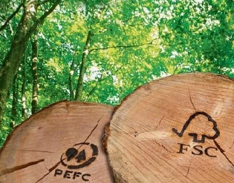 L'import dà una spinta al legno; la certificazione è una garanzia