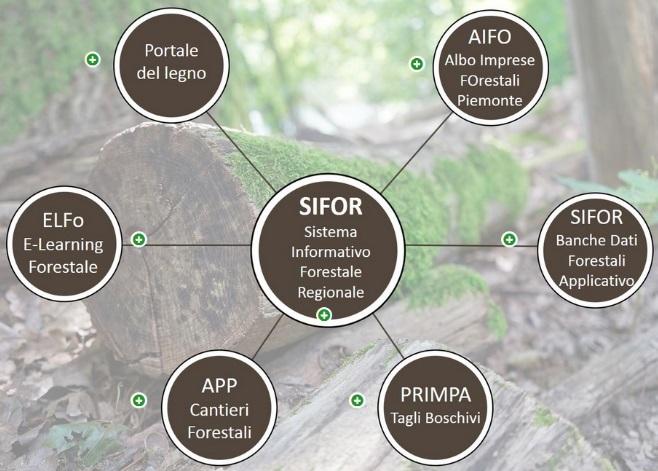 Regione Piemonte: nuovo spazio informativo SIFOR