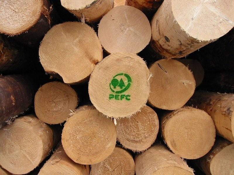 PEFC Italia: più di mille aziende con la certificazione di gestione forestale sostenibile