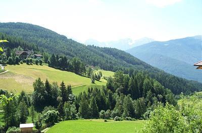 Un premio per le Comunità Forestali Sostenibili