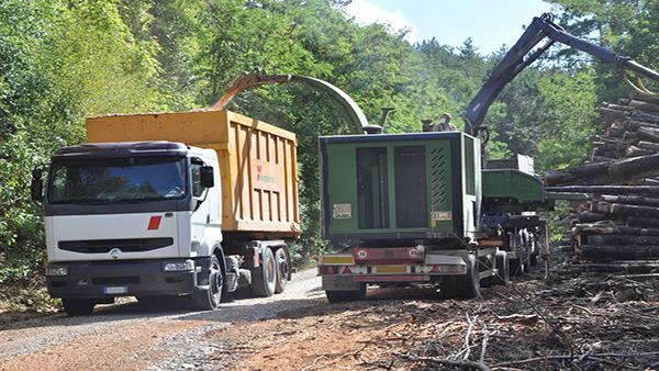 Dal bosco alle caldaie: col cippato locale fino al 95% di risparmio di CO2 rispetto alle fonti fossili