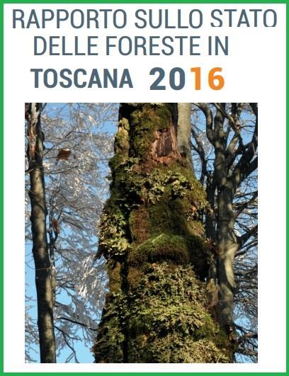 Rapporto sullo stato delle foreste in Toscana, la regione a più ampia superficie boscata in Italia