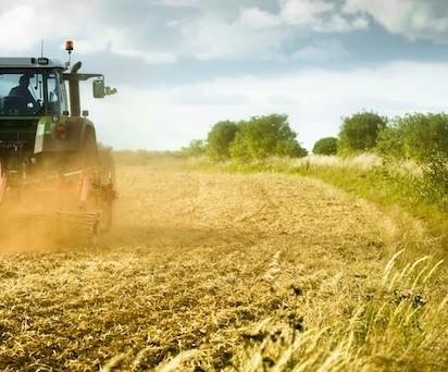 MIPAAF. 8mila ettari coltivabili in vendita per favorire gli under 40