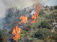 Gli incendi boschivi in aumento in Europa
