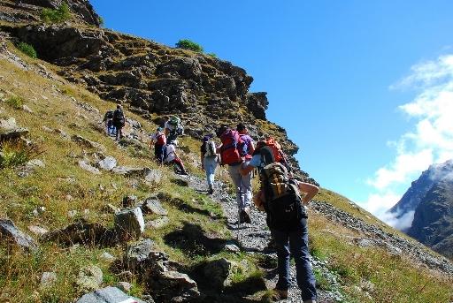 Psr Piemonte, Montagne e Foreste: come sono state spese le risorse della Comunità europea