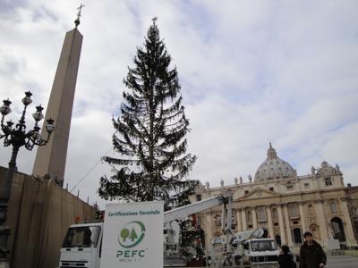 Natale sostenibile: Alberi e presepi certificati PEFC