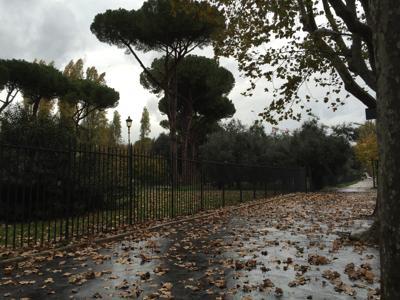 In Italia tanto verde, ma i punti deboli sono gestione e manutenzione