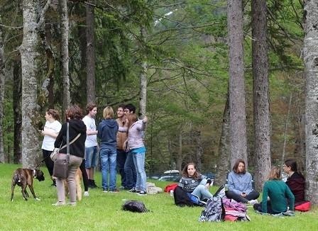 Concerti nella foresta col legno 'che suona'