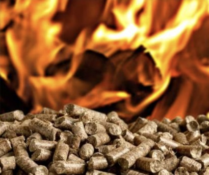 Il DL CRESCITA sblocca i certificati bianchi per le biomasse