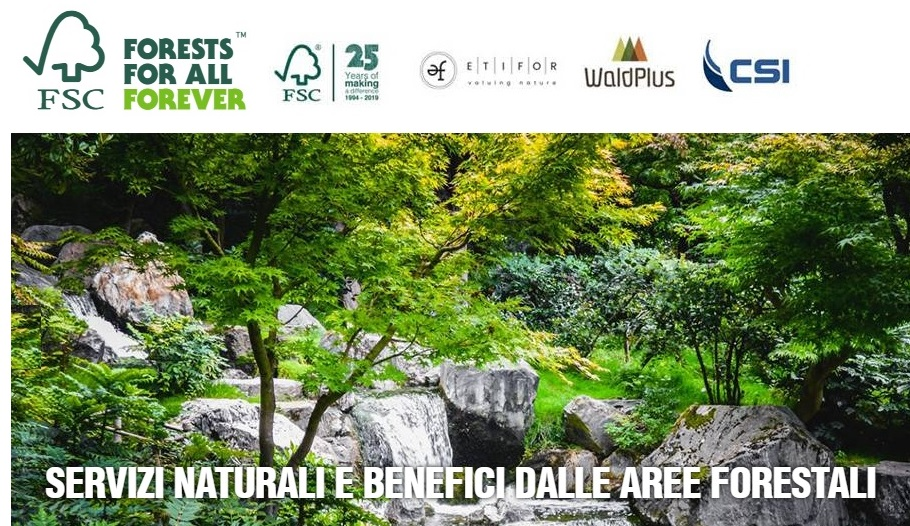 I benefici delle foreste certificati per la prima volta al mondo in Italia