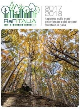 Rapporto sullo stato delle foreste e del settore forestale in Italia 2017-2018