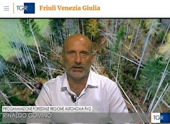Al TG3 l'intervista del Dr. For. Rinaldo Comino su un primo bilancio post VAIA