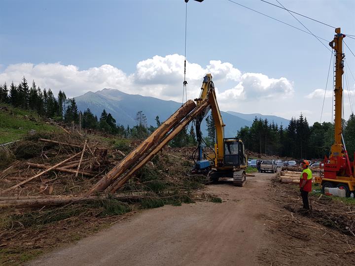 FederlegnoArredo: legname abbattuto dall'uragano Vaia: finora prelevato soltanto il 15%