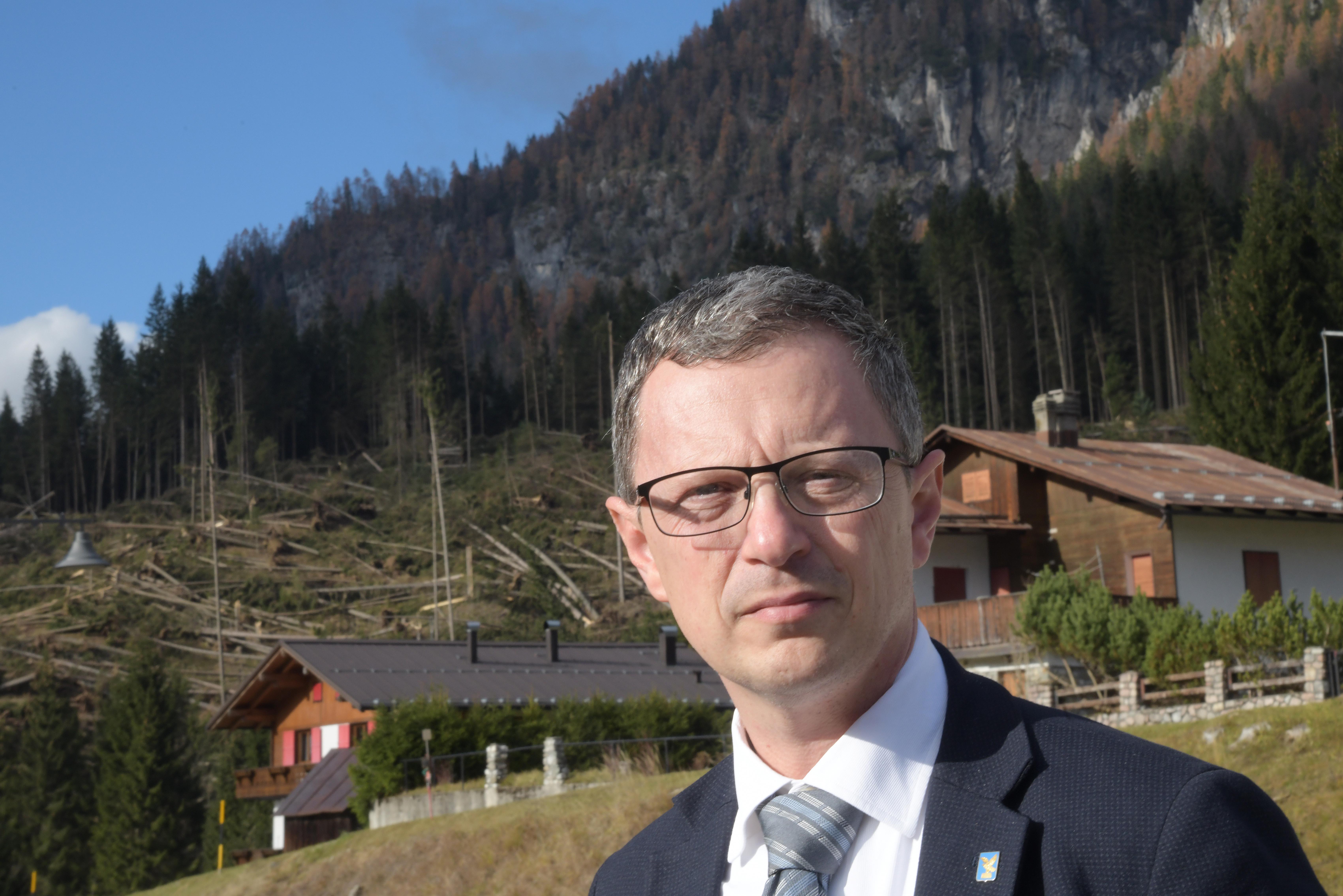 Foreste FVG: Zannier, 3,2 milioni a bando per patrimonio boschivo