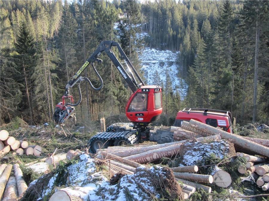 AltoAdige-Tempesta Vaia, via alle domande per i contributi rimozione legname: 12 milioni di euro il plafond